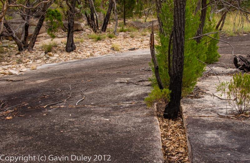 Giraween National Park, Granite Belt, Qld, Australia