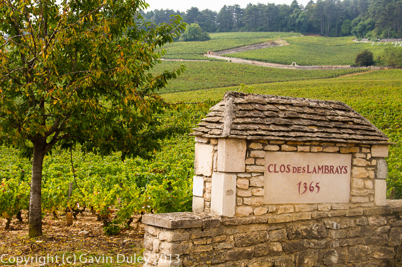 Clos de Lambray, Morey-Saint-Denis, Côte de Nuits, 27th September 2013