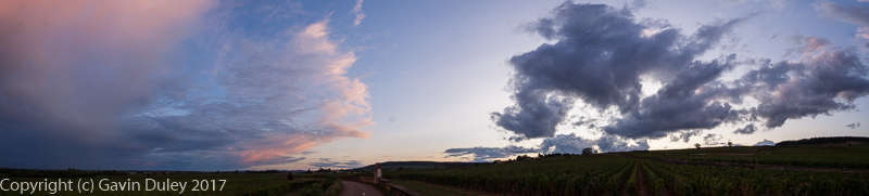 Sunset, Vineyards, Beaune, France